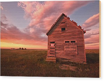 Wood Print featuring the photograph  No Trespassing by Ronda Kimbrow