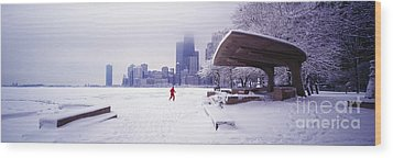 Wood Print featuring the photograph  North Ave Beach Chess Palv Chicago Lake Front  by Tom Jelen