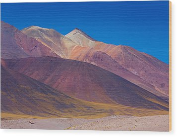 Painted Atacama Wood Print