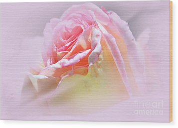 Peaceful Pink Rose Haze Wood Print by Judy Palkimas