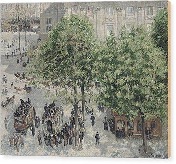 Place Du Theatre Francais Wood Print by Camille Pissarro