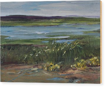 Salt Marsh Wood Print by Diane Ursin