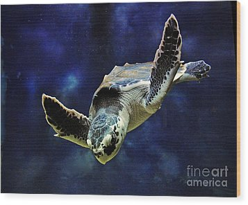 Wood Print featuring the photograph  Sea Turtle by Savannah Gibbs