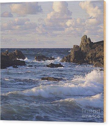 Seascape. Rocks. Normandy. France. Europe Wood Print by Bernard Jaubert