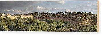 Segovia Hills Wood Print by Viacheslav Savitskiy