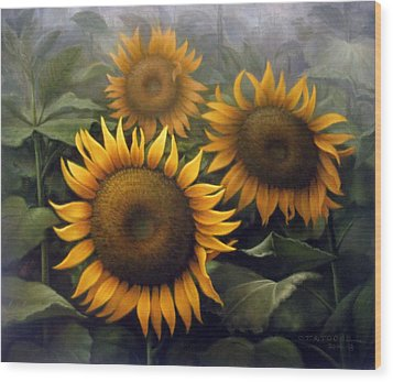 Sunflower 4 Wood Print