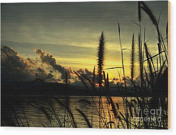 Sunset Wood Print by Michelle Meenawong