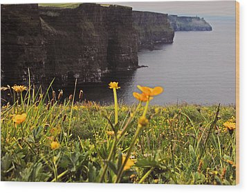The Cliffs Of Moher Wood Print by Will Burlingham