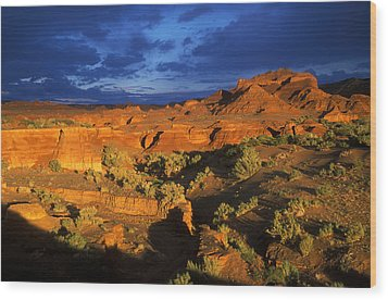 The Gobi Wood Print by Anonymous