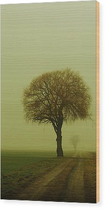 Wood Print featuring the photograph  Walk In The Fog by Franziskus Pfleghart
