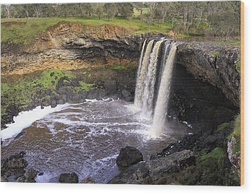 Wannon Falls Wood Print by Kim Andelkovic