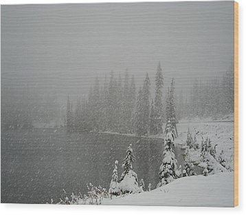 You Can Almost Hear The Snow In This Peace  Wood Print