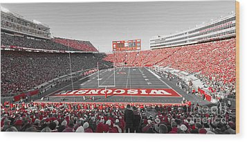 0095 Badger Football  Wood Print