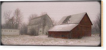 020213-112   Prairie Winter Fantasy II Wood Print by Mike Davis