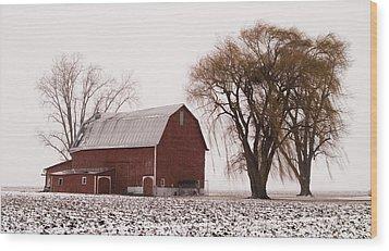 020213-57   Prairie Winter IIi Wood Print by Mike Davis