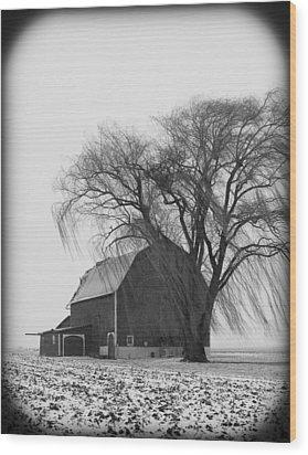 020213-67   Prairie Winter II Wood Print by Mike Davis