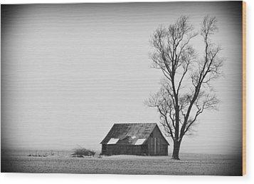 020213-73   Prairie Winter Wood Print by Mike Davis