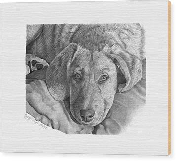 033 - Molly Wood Print by Abbey Noelle