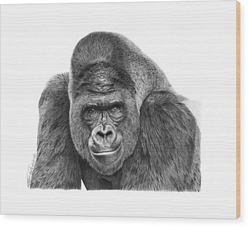 Wood Print featuring the drawing 042 - Gomer The Silverback Gorilla by Abbey Noelle