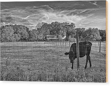 0570-223-bandw Wood Print by Lewis Mann