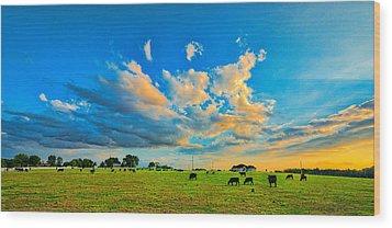0634-636-224 Wood Print by Lewis Mann