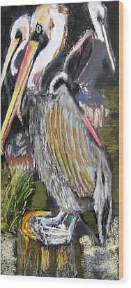 090914 Pelicans Wood Print