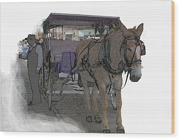 091614 Color Pencil Mule And Carriage Wood Print