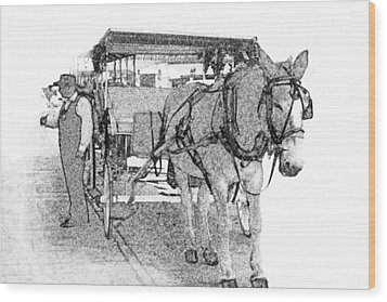 091614 Pen Drawing Carriages French Quarter Wood Print