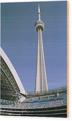 09.skydome.hm Wood Print