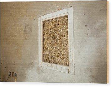 A Green Build House Wood Print