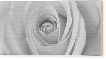 Wood Print featuring the photograph A Rose Is A Rose Is... by Silke Brubaker