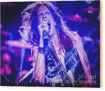 Aerosmith Steven Tyler Singing In Concert Wood Print by Jani Bryson