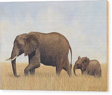 African Elephants Wood Print by David Stribbling