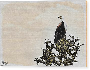 African Fish Eagle Wood Print