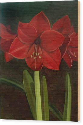 Amaryllis Wood Print by Nancy Griswold