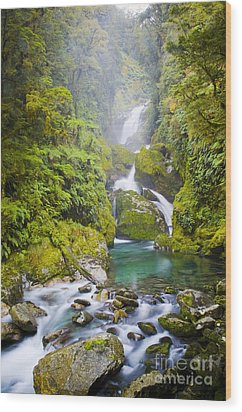 Amazing Waterfall Wood Print by Tim Hester