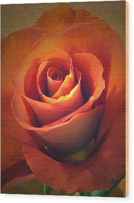 Amber Rose Wood Print