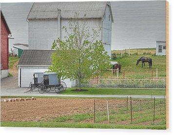 An Amish Farm Wood Print by Dyle   Warren
