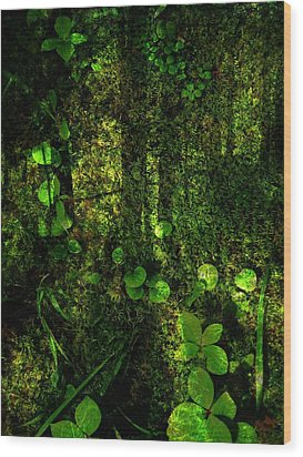 An Earthy Place Wood Print by Shirley Sirois