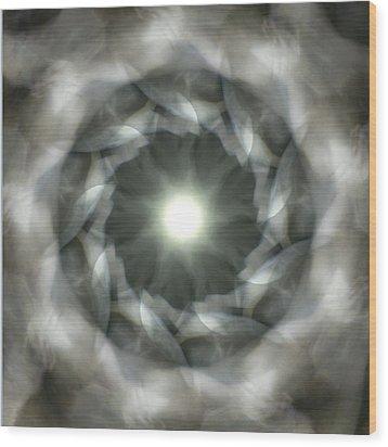 Ancient Light II Wood Print by Lisa Lipsett