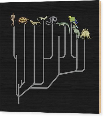 Animal Family Tree Wood Print