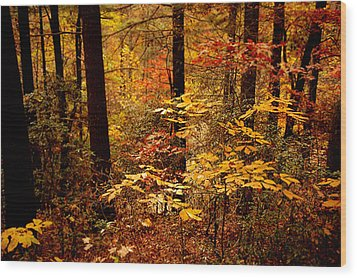 Wood Print featuring the photograph Appalachian Fall by Phyllis Peterson