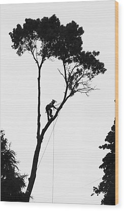 Arborist At Work Wood Print