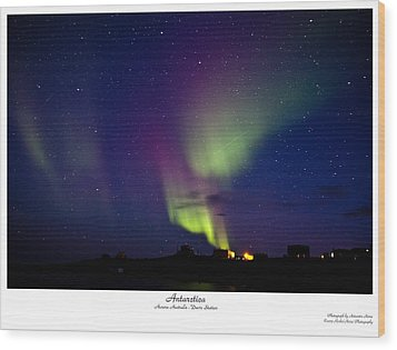 Aurora Australis Wood Print by David Barringhaus
