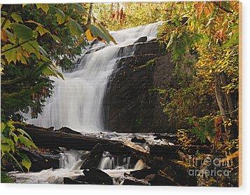 Autumn At Cattyman Falls Wood Print