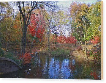 Autumn By The Creek Wood Print by Dora Sofia Caputo Photographic Art and Design