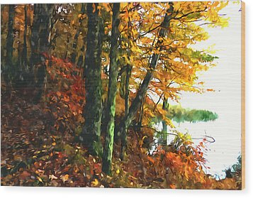 Autumn Colors In The Forest 1 Wood Print by Lanjee Chee