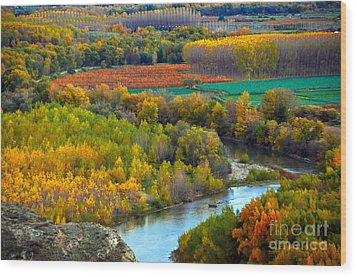 Autumn Colors On The Ebro River Wood Print by RicardMN Photography