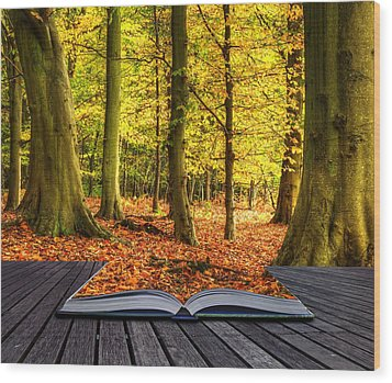 Autumn Fall Forest Landscape Magic Book Pages Wood Print by Matthew Gibson