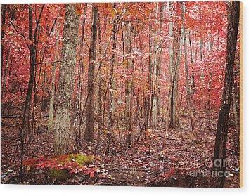 Autumn Landscape Wood Print by Kim Fearheiley